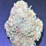 Does It Matter Which Sativa Strain You Buy?